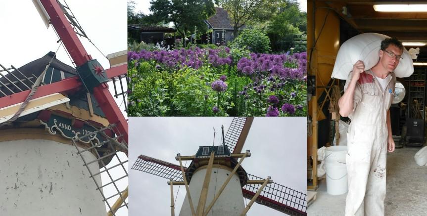 Collage Brasser's Molen en Garden Guesthouse Zeeland