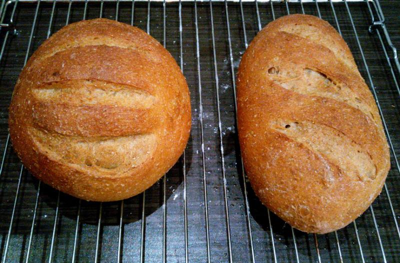 Bruin vloerbrood net uit de oven