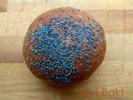 Bruine bolletje maanzaad closeup_cropped_watermerk